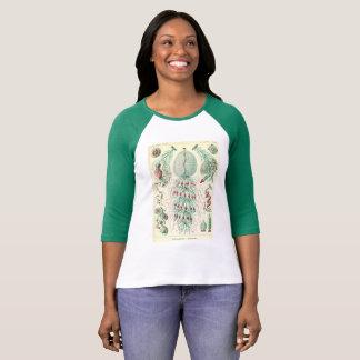 vintage T-shirt Siphonophorae ernst haeckel kunstf