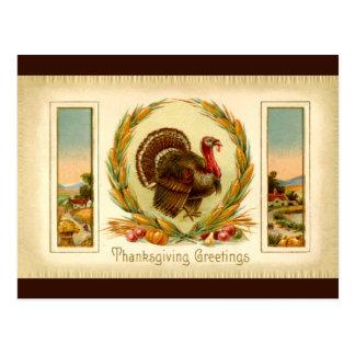 Vintage Thanksgiving Turkey Postcard