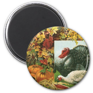 Vintage Thanksgiving, Wild Turkeys Autumn Colors Magnet