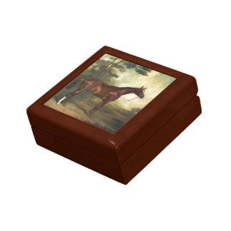 Vintage Thoroughbred Horse Gift Box
