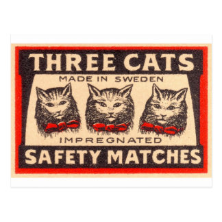 Vintage Three Cats Safety Matches Postcard