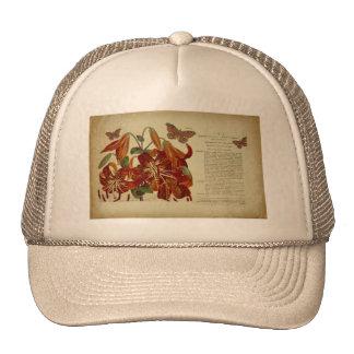Vintage Tiger Lily Botanical Illustration Hats