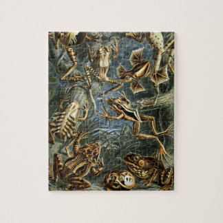 Vintage Toads and Frogs Batrachia by Ernst Haeckel Jigsaw Puzzle
