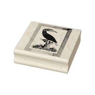 Vintage toucan bird etching rubber stamp