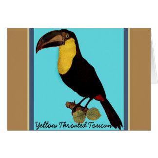 VINTAGE TOUCAN BIRD. YELLOW-THROATED TOUCAN CARD