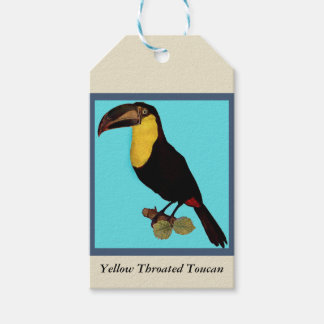 VINTAGE TOUCAN BIRD. YELLOW-THROATED TOUCAN GIFT TAGS