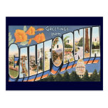 Vintage Travel, Greetings from California Poppies