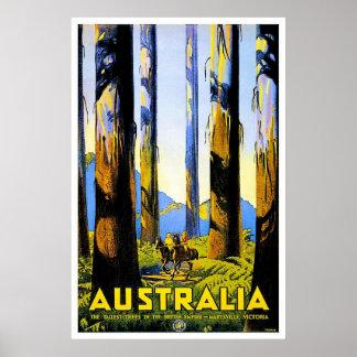 Vintage Travel Poster Au Poster