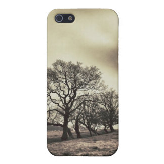 Vintage trees iPhone 5 covers