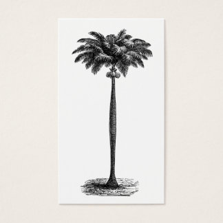 Vintage Tropical Island Palm TreeTemplate Blank Business Card