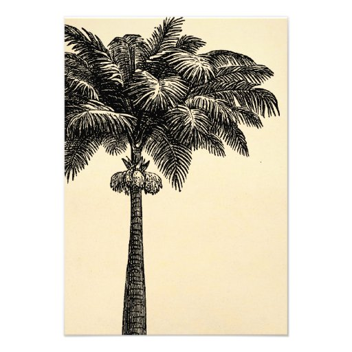 Vintage Tropical Island Palm Tree Template Blank Personalized Invitation
