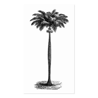 Vintage Tropical Island Palm Tree Template Blank Pack Of Standard Business Cards