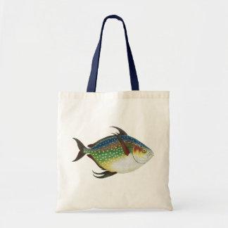 Vintage Tropical Opah Fish, Marine Aquatic Animal