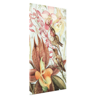 Vintage Tropical Orchids, Flowers and Hummingbirds Canvas Print