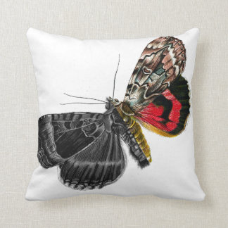 Vintage Two Toned Graphic Moth   Butterfly Pillow