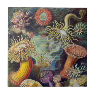 Vintage Underwater Sea Anemones by Ernst Haeckel Ceramic Tile
