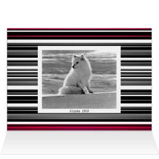 Vintage USA Alaska Arctic fox Card