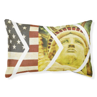Vintage USA Flag Statue of Liberty Chevrons