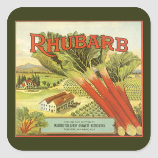 Vintage Vegetable Can Label Art, Rhubarb Farm Square Sticker