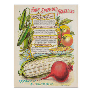 Vintage Vegetables | Kitchen Decor