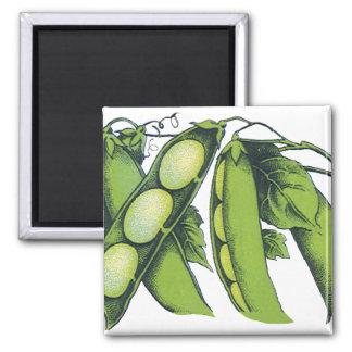 Vintage Vegetables; Lima Beans, Organic Farm Foods Fridge Magnets