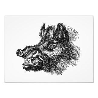 Vintage Vicious Wild Boar w Tusks Template Photo Art