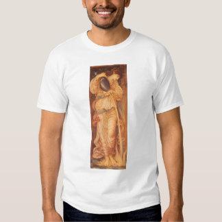 Vintage Victorian Art, Temperantia by Burne Jones T Shirts