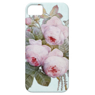Vintage Victorian English Roses On Baby Blue iPhone 5 Case