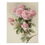 Vintage Victorian Romantic Roses Posters