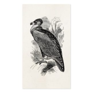 Vintage Vulture Bird Personalized Vultures Birds Pack Of Standard Business Cards