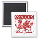 Vintage Wales Fridge Magnets