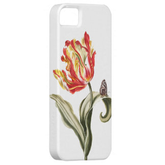 Vintage Watercolor Tulip Butterfly   Garden iPhone 5 Cover