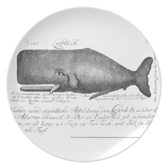 Vintage Whale Design Plate