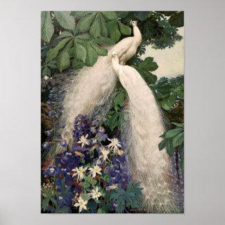 Vintage White Peacock Poster