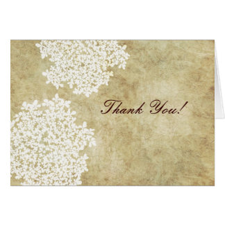Vintage White Queen Ann s Lace Thank You Cards