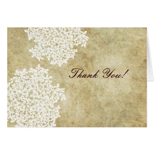 Vintage White Queen Ann's Lace Thank You Cards