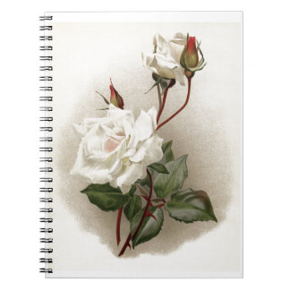Vintage White Rose Spiral Notebook