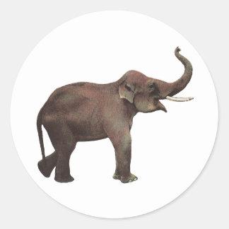 Vintage Wild Animals, Good Luck Asian Elephants Round Sticker