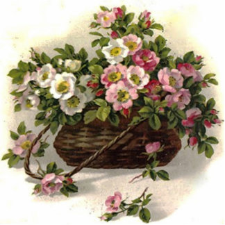 Vintage Wild Roses Photo Sculpture Magnet