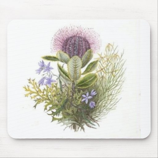 Vintage Wildflowers Thistle Mouse Pads