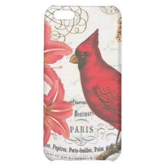 vintage winter cardinal iPhone 5C cases