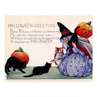 Vintage Witch Black Cat Owl Halloween Postcard