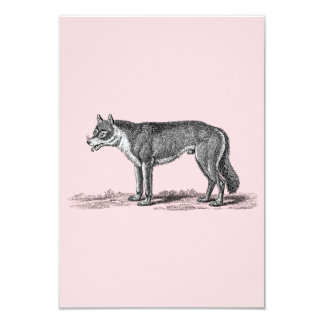 Vintage Wolf Illustration - 1800's Wolves Template Card