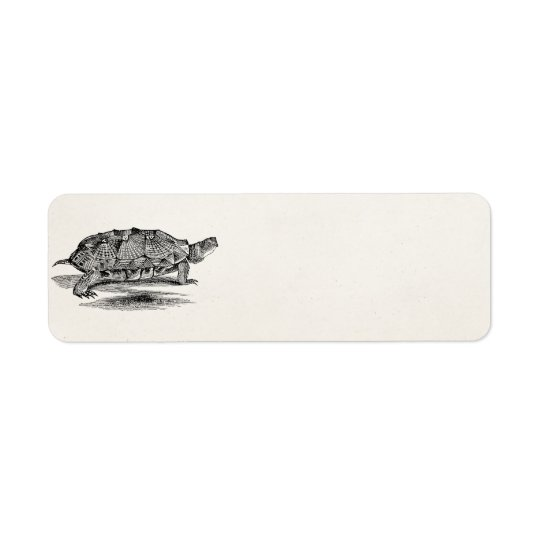 Vintage Wood Terrapin Turtle Template Blank Return Address Label