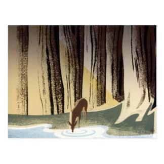 Vintage WPA Wild Life Deer National Parks Postcard