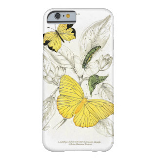 Vintage Yellow Butterflies Insects Barely There iPhone 6 Case