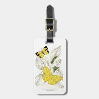 Vintage Yellow Butterflies Insects Luggage Tag