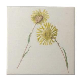 Vintage Yellow Wildflowers Tile