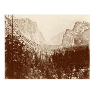 Vintage Yosemite National Park Postcard