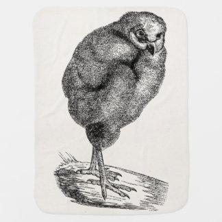 Vintage Young Barn Owl Bird - Baby Birds Template Buggy Blankets